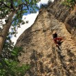 Climber on the rock in forest — Stock Photo #38236951