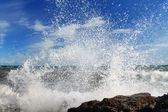 Storm wave on the shore of the sea — Stock Photo