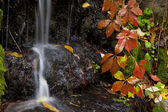 Autumn Waterfall in the forest — Stock Photo