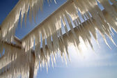 Icicles on a background of blue sky — Stockfoto