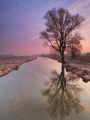 Surise under the river in spring — Stock Photo