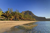 Tropical island Mauritius — Stock Photo