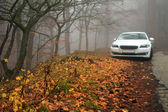 White car in the autumn forest in the fog — Stock Photo