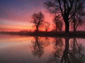 Riflessione di alba nel fiume — Foto Stock