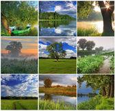 Koláž z jara krajiny — Stock fotografie