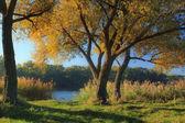 Misty autumn sunrise on the river bank — Stock Photo