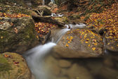 Autumn river in the forest — Stock Photo