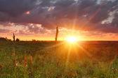 Zachód słońca na polu — Zdjęcie stockowe
