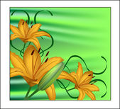 Yellow lily on a green background — Vector de stock