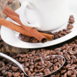 Coffee cup surrounded by coffee beans and scoop. — Stock Photo