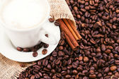 The coffee beans, a cup of coffee. — Stock Photo