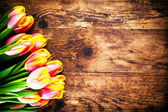 Tulips in old wood background. — Photo