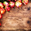 Valentines Day background with roses. — Stock Photo
