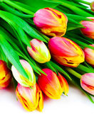 Beautiful bouquet of colorful tulips. — Stock Photo