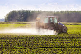 In spring, the corn is sprayed on the tractor. — Stock Photo