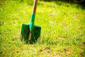 Garden tools on green grass. — Stock Photo
