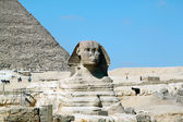 Sphinx in Egypt in Cairo — 图库照片