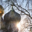 The dome of the Church of the Novodevichy Convent — Stock Photo
