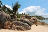 Panorama sulla spiaggia — Foto Stock