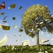 Money tree — Stock Photo #29317629