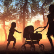 The  woman with a baby carriage — Stock Photo