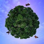 Butterflies and green planet. — Foto Stock
