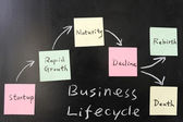 Business lifecycle concept — Stock Photo