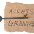 Stock Photo: Old key and access granted words