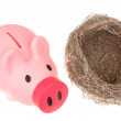 Stock Photo: Bird nest and piggy bank