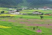 Landscape of Shangri-La tibetan village — Stock Photo