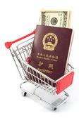 Chinese passport in cart — Stock Photo