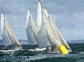 Fleet yacht at regatta — Stock Photo