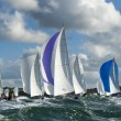 Group yacht at regatta - Stock Photo