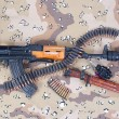 Stock Photo: Kalashnikov concept