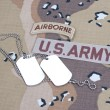US ARMY ranger tab with blank dog tags — Stock Photo #45019891