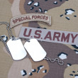 US ARMY ranger tab with blank dog tags — Stock Photo #45019893