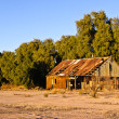 Abandoned Palo Verde House — Stock Photo #15015285