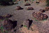 The Petroglyphs of Rocky Point Arizona closeup — Foto de Stock
