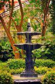 喷泉 — 图库照片