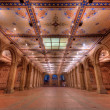 Bethesda Terrace Underpass - Stock Photo