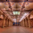 Bethesda Terrace Underpass — Stock Photo