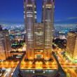 Metropolitan Government Building — Stock Photo