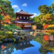 Ginkaku-ji  Temple in Kyoto — Foto Stock