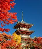 Kiyomizu-dera pagoda w kioto — Zdjęcie stockowe