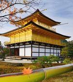 Kinkakuji tempel — Stockfoto
