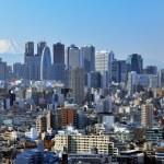 Tokyo and Fuji — Stock Photo #22055631