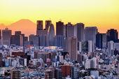 Tokyo and Fuji — Stock Photo