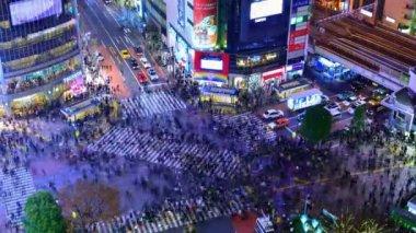 Shibuya Crossing, Tokyo — Stock Video