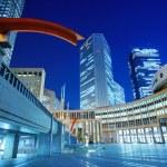 ������, ������: Tokyo Metropolitan Assembly