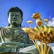 great buddha — Stock Photo